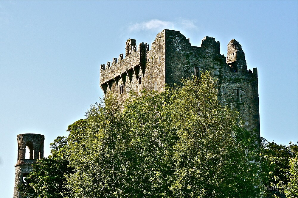 Blarney Castle, County Cork, Ireland by Mary Fox