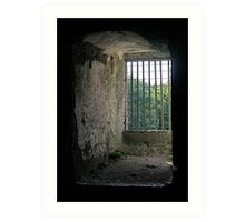Window from inside Blarney Castle, County Cork, Ireland Art Print