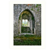 Foliage on Blarney Castle Window, County Cork, Ireland Art Print