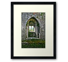 Foliage on Blarney Castle Window, County Cork, Ireland Framed Print