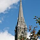 St. Coleman's Cathedral, County Cork, Ireland by Mary Fox