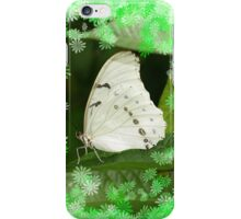 White Papilio With Flowers iPhone Case/Skin