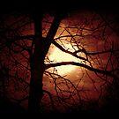 Halloween Moonshine by Chelei