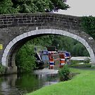 Along The Towpath by Barrie Woodward