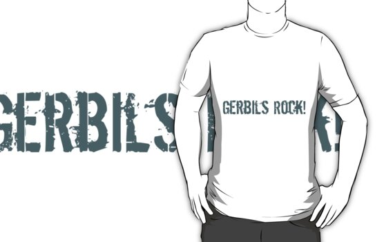 Gerbils Rock! by hybridwing