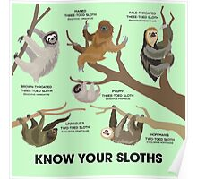 Know Your Sloths Poster