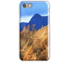 Harrison Stickle from Tarn Hows - Illuminated Pine Forest iPhone Case/Skin
