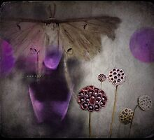 Blind folk see the fairies... by Catherine Restivo