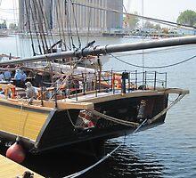 Brig Niagara at dock in Buffalo by Ray Vaughan