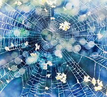 fairy web by © Karin Taylor
