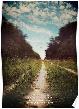 the long road home by Sybille Sterk