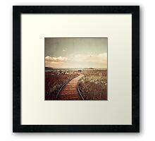 Mono Lake unplugged Framed Print