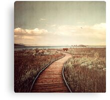 Mono Lake unplugged Canvas Print