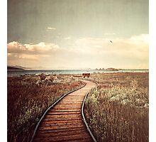 Mono Lake unplugged Photographic Print