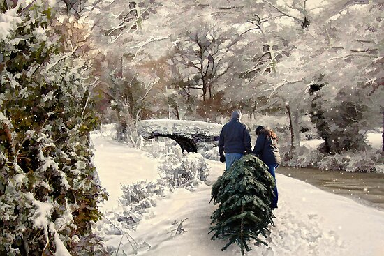 Bringing home the tree by Lyn Evans