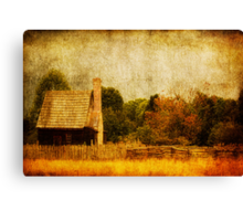 Quiet Life Canvas Print