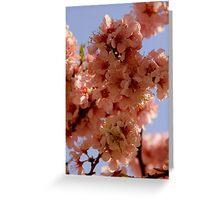 Floriade Blossom Greeting Card
