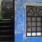 Blue House - Casa Azul by Bernhard Matejka