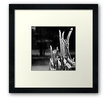 Our Dearly Departed Framed Print