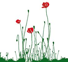 Poppies by tournelyne