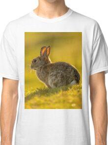 Cute Rabbit Wildlife Golden Hour Classic T-Shirt