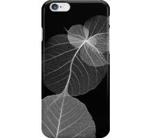 Flores 1 iPhone Case/Skin