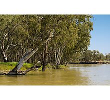 Murray River, South Australia Photographic Print