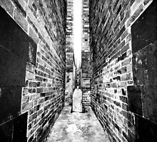 Hong Kong Alley by Chopen