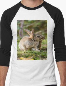 Cute Wild Leveret a Little Itch Men's Baseball ¾ T-Shirt