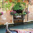Window in Venice by Jacqueline Longhurst