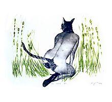 true nature nr 2 cat woman art Photographic Print