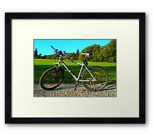 BULLS MTB Framed Print