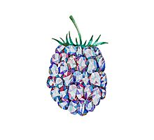 Low Poly Watercolor Blackberry Photographic Print