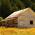 Coleman Valley Barn by Stephanie Macwhorter