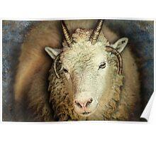Got My Goat Poster