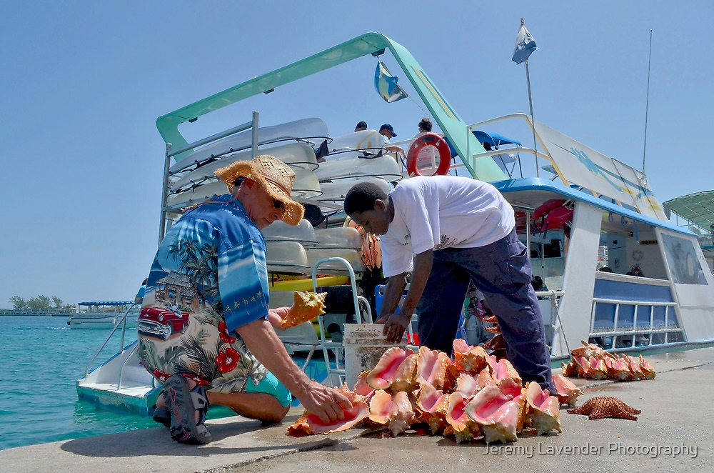 Choosing a Conch Shell... Nassau, The Bahamas by Jeremy Lavender Photography