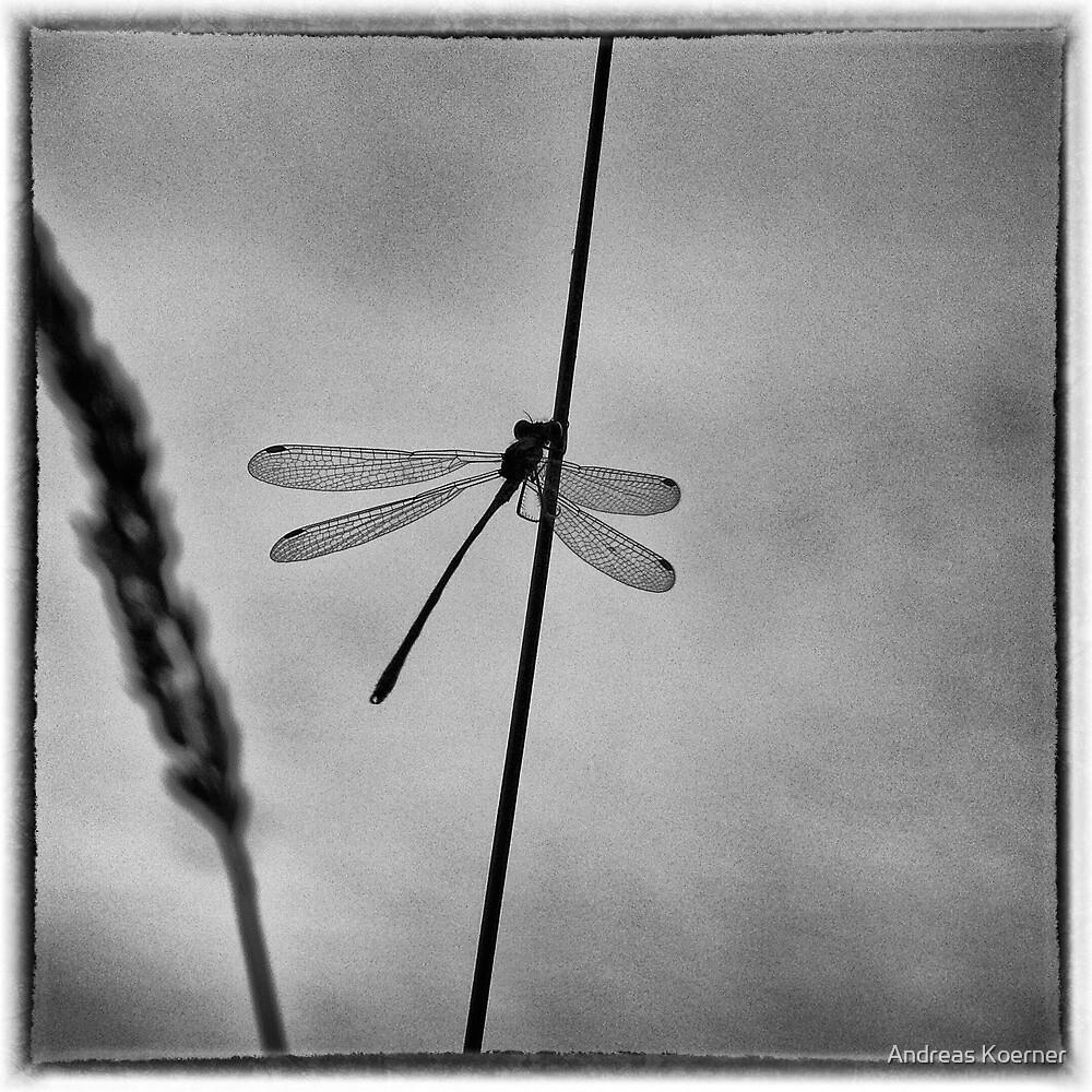 """Waiting"" (B&W) by Andreas Koerner"