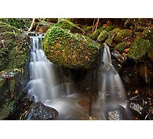 Guy Fawkes Rivulet, Tasmania #5 Photographic Print