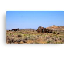 Lost In The Desert Canvas Print