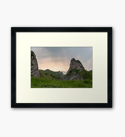 Raw Framed Print