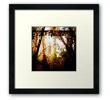 treibhaus Framed Print