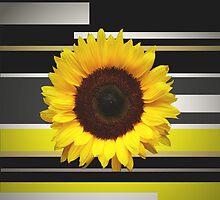 Sunflower by Müge Başak