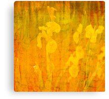 Grunge abstract botanical pattern yellow iris motif Canvas Print