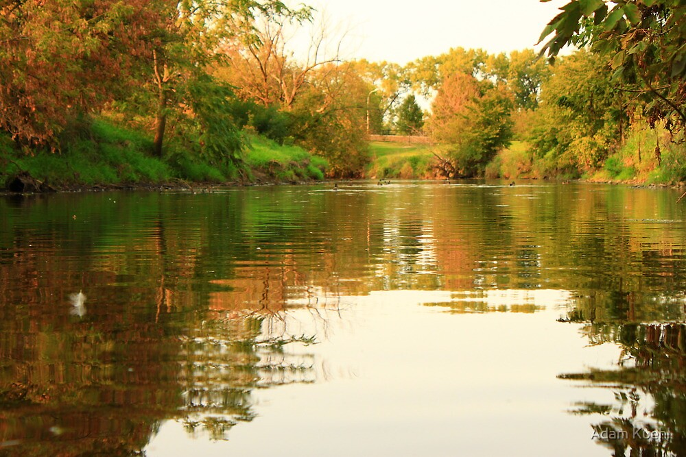 A Lazily Flowing East Branch of the Dupage River by Adam Kuehl