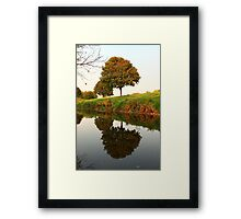 A Reflection in Nature Framed Print