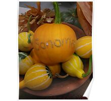 Sonoma County Pumpkin and Gourds Poster
