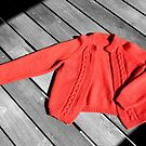 The Red Cardigan by Bami