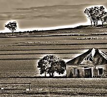 Old Shack HDR by Candice O'Neill