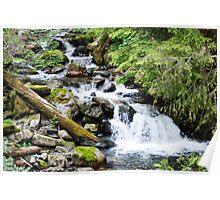 Mallardy Creek Waterfall Poster