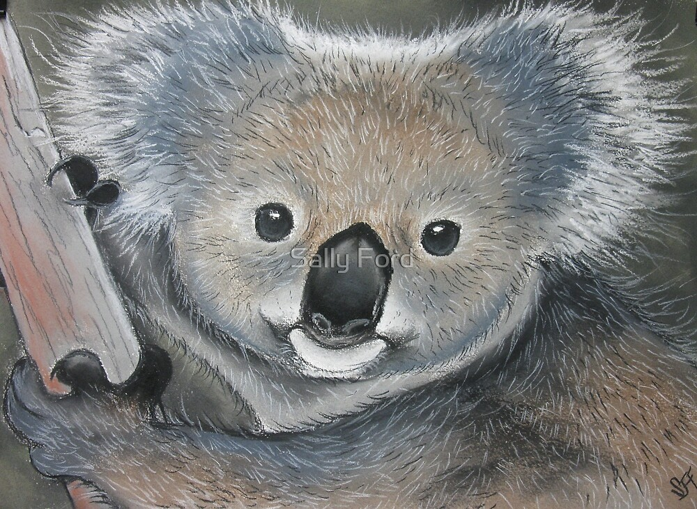 Bright Eyes by Sally Ford